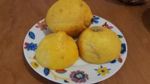 Zitrone im Mineralwasser schmeckt nicht nur erfrischend, ist auch gesund.