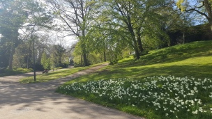 In Bremen findet sich überall die Möglichkeit zu einer Auszeit im Grünen - genau das Richtige für uns!