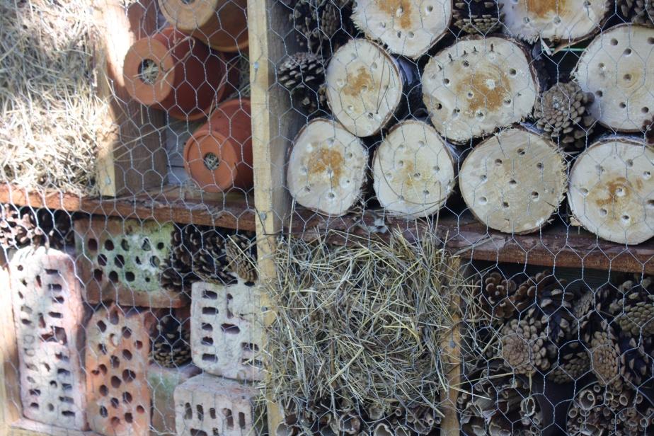 Herzlich willkommen! – Insektenhotel Teil2