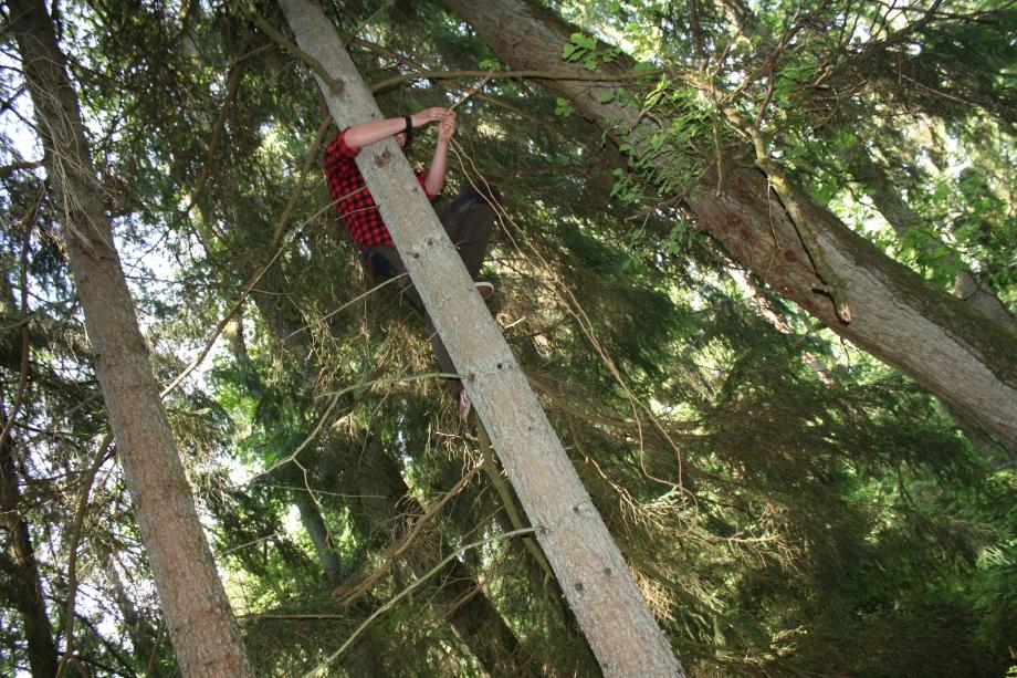 """Der Landpapa musste zuvor noch hoch hinaus, um unseren """"Waldfrieden"""" aufzuhängen."""