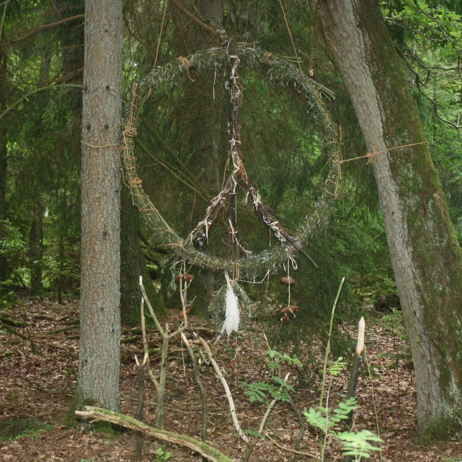 """""""Waldfrieden - bedroht"""", unser Beitrag."""