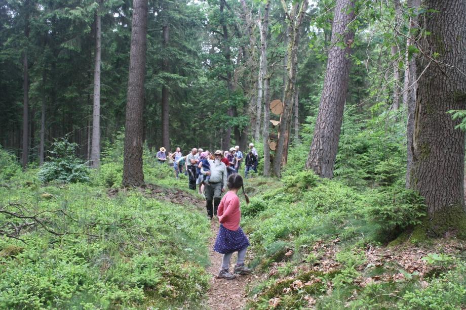 Gemeinschaftliche Pirsch auf Waldes-Kunst..