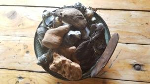Wir haben Muscheln und Steine gesammelt. Zuhause werden wir damit kleine Windspiele basteln - davon berichten wir euch natürlich!