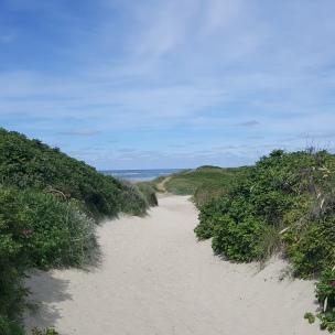 Der Strandsand ist h