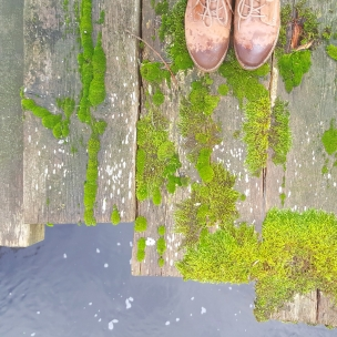 Unten am Fluss bewächst das Moss klammheimlich über das alte Holz der Brücke..