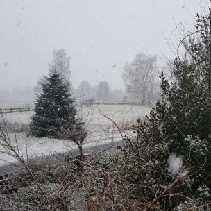 Draußen schneit es nun doch noch einmal kräftig.