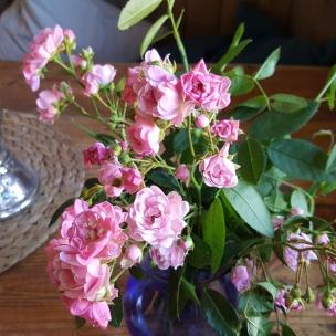 Auch im Haus halten die schönen Rosen Einzug.