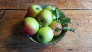Wir können kaum glauben welche Massen an Äpfeln uns in diesem Jahr zur Verfügung stehen - die Bäume sind voll und es nimmt gefühlt kein Ende. So gibt es einen reichlichen Vorrat an Apfelmus und getrockneten Apfelringen, Saft folgt noch..