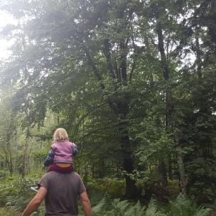 Auf Papas Schultern lässt sich der Wald am Besten überblicken..