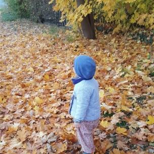 Das Toben im Laub hat dem Landkind in diesem Herbst besondere Freude bereitet, denn das Laub war schön trocken und die Sonne kitzelte derweil noch auf der Nase.