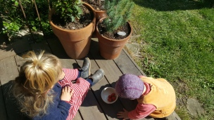 Die Landmädchen genießen erste Gewächshaus-Erdbeeren und hüpfen fröhlich durch den Garten..